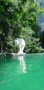 Polar bear, Zoo de la Flêche